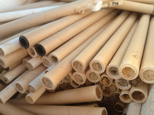 wild bee nesting tubes