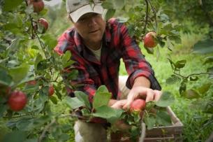 Eric Shatt of Redbyrd Orchard Cider