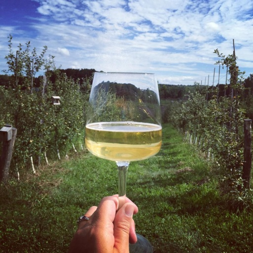 Redbyrd Newtown Rd Orchard+cider in glass -AmyPali photo credit